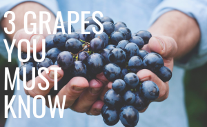 Master Sommelier Reveals 3 Wine Grapes You Must Know (VIDEO)