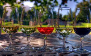 11 Vegan Wine Picks + Plant Based Wine Pairings