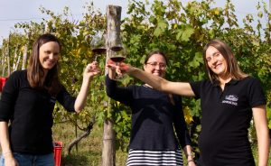 Post-Pandemic Travel to Piedmont? Yes, Please!