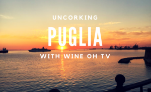 Puglia: Uncorking Primitivo Wine Between Two Seas (VIDEO)