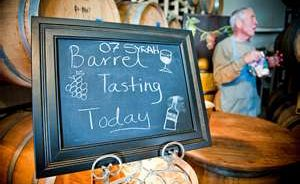 Wine Oh TV Barrel Tasting